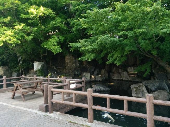 龍津寺下の川