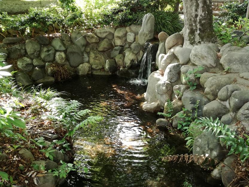 諏訪神社の湧水